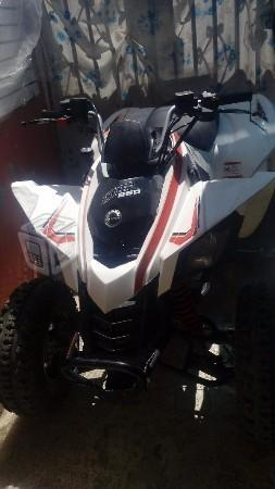 Can-am ds250 -09